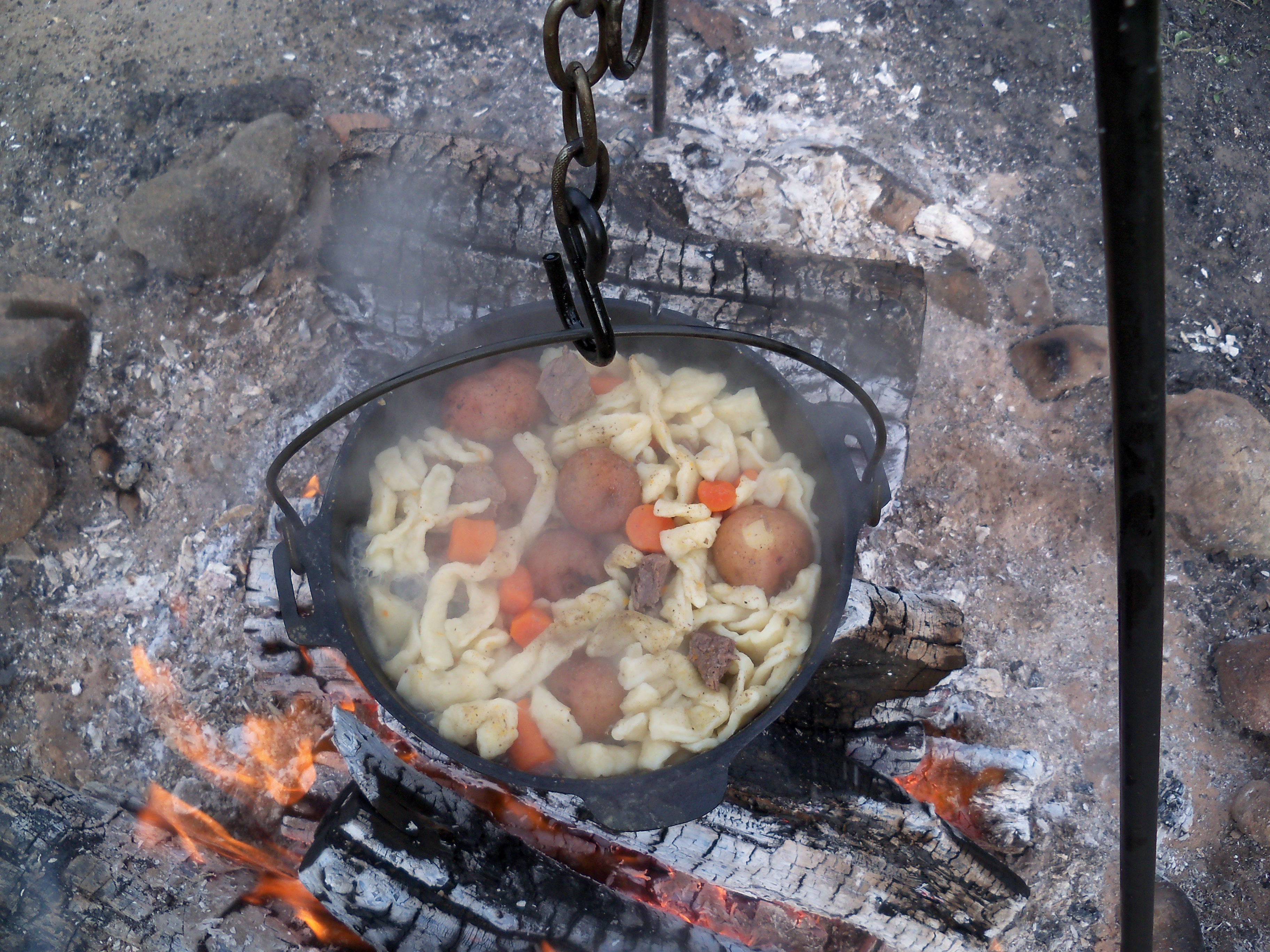 Beef stew for How to cook in a dutch oven over a campfire