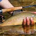 fishing-30