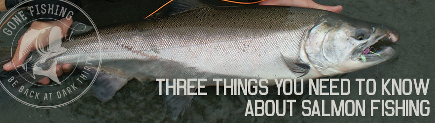 Three Things You Need To Know About Salmon Fishing