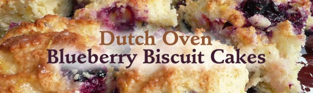 dutch-oven-blueberry-bicuit-cakes_banner